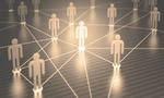 Agile Organisation: Netzwerk