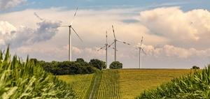 Arbeitswelten 2050: grüne Startups im ländlichen Raum