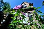 Alte Villa mit Blumen