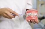 Arzthelferin zeigt anhand eines Gebisses mit Zahnspange wie man richtig Zähne putzt