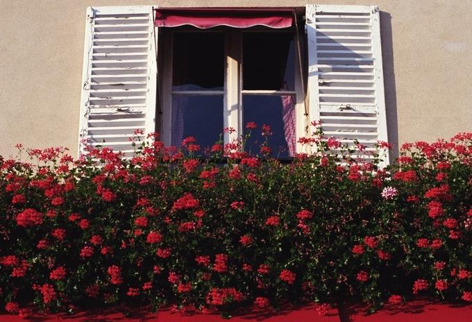 Mietrecht: Neue Fenster dürfen andere Farbe haben