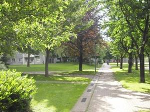 Wohnungswirtschaft: Baumlehrpfad eröffnet