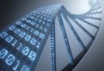 Binärzahlen die wie eine DNA-Matrix aussehen