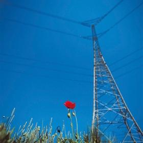 Hochspannungsmast, Blumenwiese, blauer Himmel