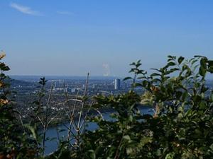 """Wagner-Gruppe baut """"Wohnpark"""" in Bonn-Duisdorf"""