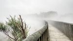 Brücke über Nebel