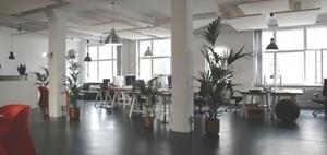 Studien: Bürovermietung bricht ein – Reserven gibts trotzdem kaum