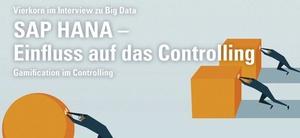 SAP HANA und Simple Finance: Einfluss auf das Controlling