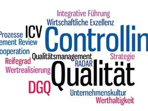 ICV-Leitfaden Controlling und Qualitaet