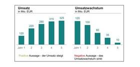 Darstellung Umsatzwachstum im Reporting