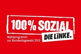 DIE LINKE. 100 % sozial