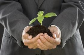 Eco - Anzugträger hält Pflanze in Erde
