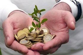 Eco Jobs - Hände die Geldmünzen und eine Pflanze halten