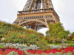 Frankreich: L'Oreal-Chef warnt vor zu hohen Steuern