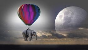 Elephant Heißluft-Ballon Mission Klima
