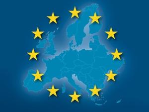 EU-Wahl -bunte Vögel unter den Wählern und Gewählten