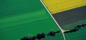 Unterverpachtung landwirtschaftlicher Flächen