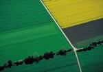 Feld und Wiese Flächenverbrauch