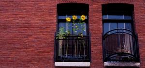 Wohnimmobilien-Investmentmarkt Deutschland
