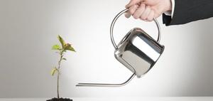 Mit den Mandanten wachsen: Chancen bei der Betreuung von Startups