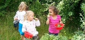 CSR: Deutsche Wohnen unterstützt Naturprojekt in Marzahn