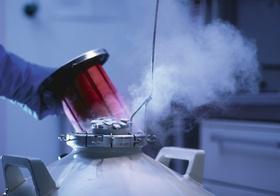 Proben werden aus Stickstoffbehaelter entnommen