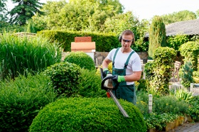 Gärtner beim Hecke schneiden