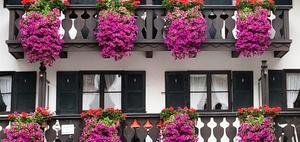 Immobilienkauf: Knappes Angebot treibt Preise in Bayern