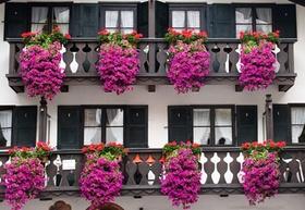Garmisch-Partenkirchen_Bayern Balkon mit Blumen