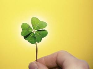 Glücksstudie: Arbeitsglück als Erfolgsrezept