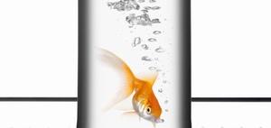 Hotellerie: Goldfisch für einsame Dienstreisende