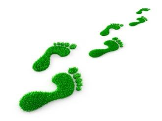 Green Footprint Nachhaltigkeit