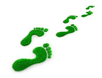 Zero-Emission-Day: Nachhaltigkeit für Steuerkanzleien als unternehmerische Chance