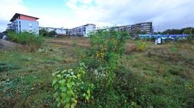 Dreispitz Rieselfeld Baugebiet Neubaugebiet