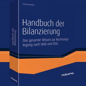 Handbuch der Bilanzierung