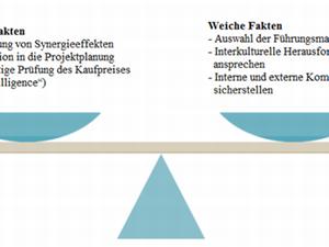 Beteiligungscontrolling: Fusionen und Übernahmen