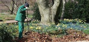 BGH: Pflege öffentlicher Gartenfläche keine Betriebskosten