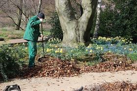 Hausmeister oder Gärtner fegt Laub zusammen