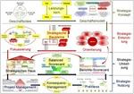 In vier Phasen vom Strategiekonzept zur Strategienutzung