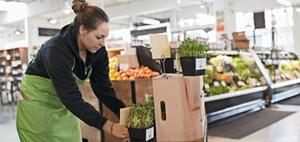 BVK geht mit Spezialfonds für Retail-Parks an den Start