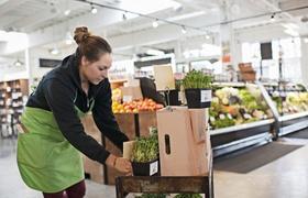Junge erwachsene Mitarbeiterin sortiert Waren im Supermarkt
