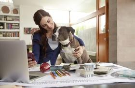 junge Frau mit Hund zufrieden am Arbeitsplatz