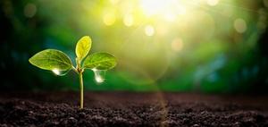 Zusammenhang Nachhaltigkeit und Unternehmensperformance