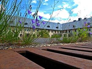 Ramsauer will leere Kasernen für Studenten umbauen