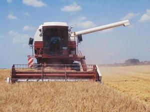Landwirtschaft: Atemwegserkrankungen und Asthma
