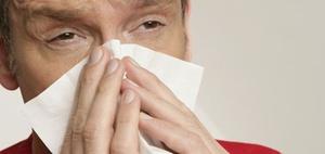 Allergien: Arbeitsunfähig wegen Heuschnupfen