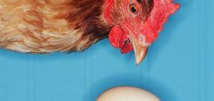 Tierhaltungsgemeinschaft i. S. des § 51a BewG