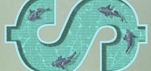 Kolumne Leadership: Was ist eigentlich Followership?