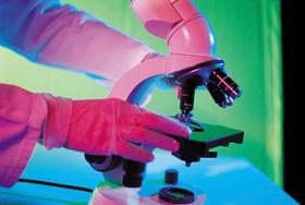 Mikroskop Labor Untersuchung