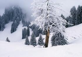Abbau der kalten Progression - keine hitzigen Debatten